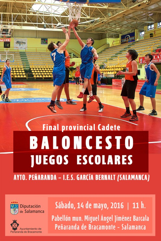 D-2016-cartel-baloncesto-final-pk